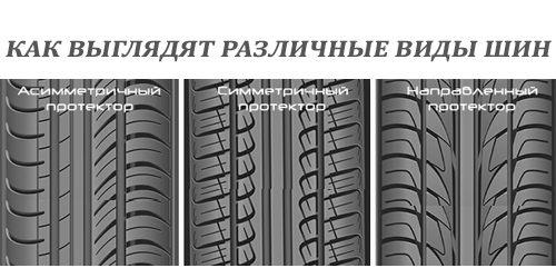 razlichiya_protektorov